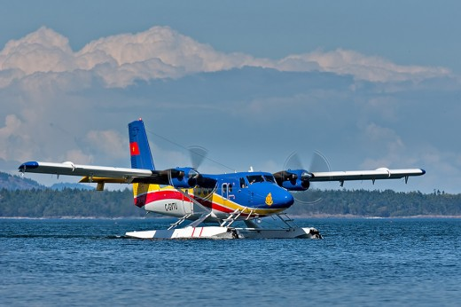 A Vietnam Navy Series 400 Twin Otter has been active in the search for Malaysian Airlines Flight 370.