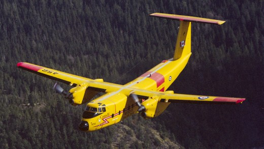 Viking Aircraft has withdrawn a bid to build new Buffaloes for the RCAF.