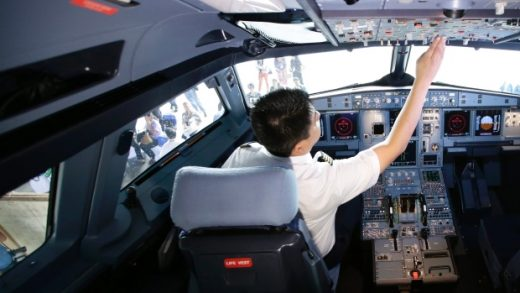 Inspection services are suffering say federal pilots.